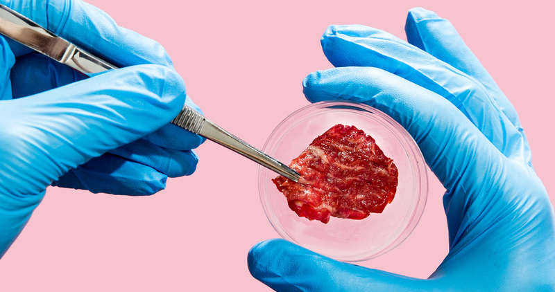 Memphis Meats: transformação na indústria alimentar