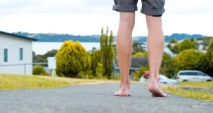 10 faits surprenants en Nouvelle-Zélande
