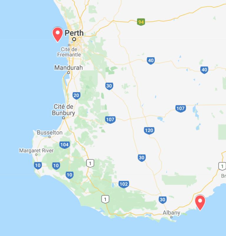 animaux d'australie où voir quokkas