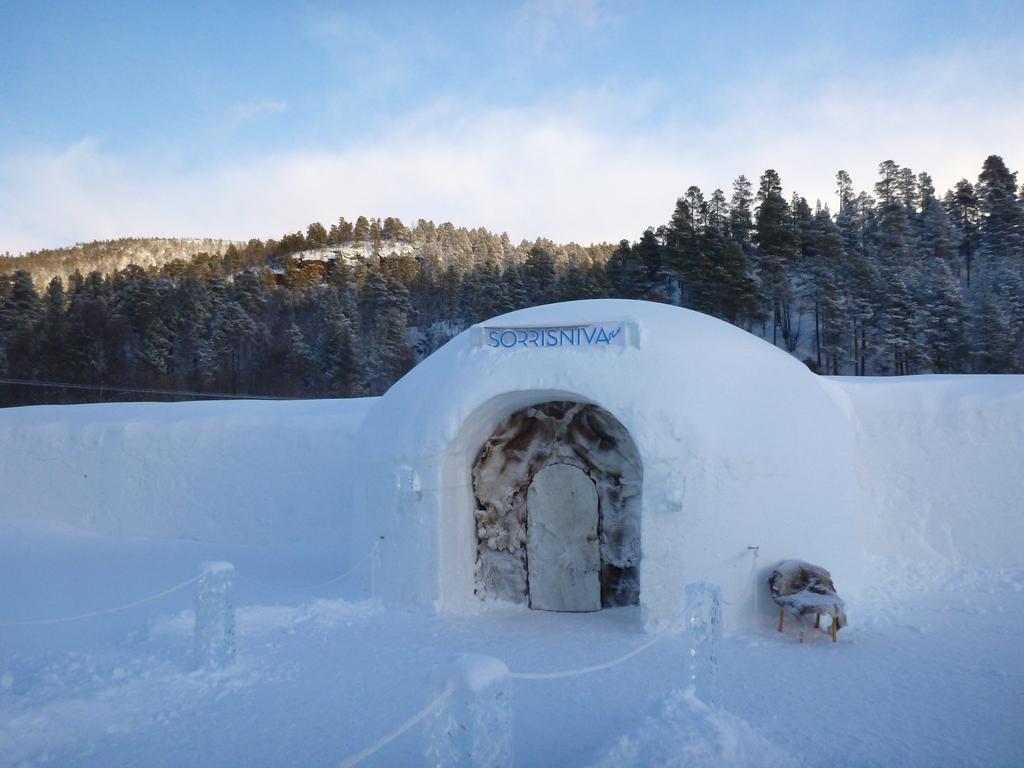 Top ijshotels Bekijk de beste ijs en Iglohotels van
