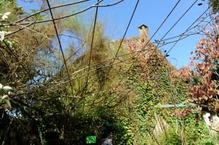 pergola metal vegetal supervolum 2014 (12)