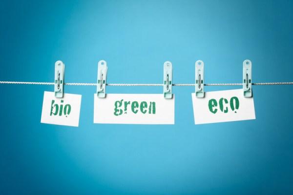 branding et greenwashing