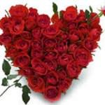 Valentines Day Logistics