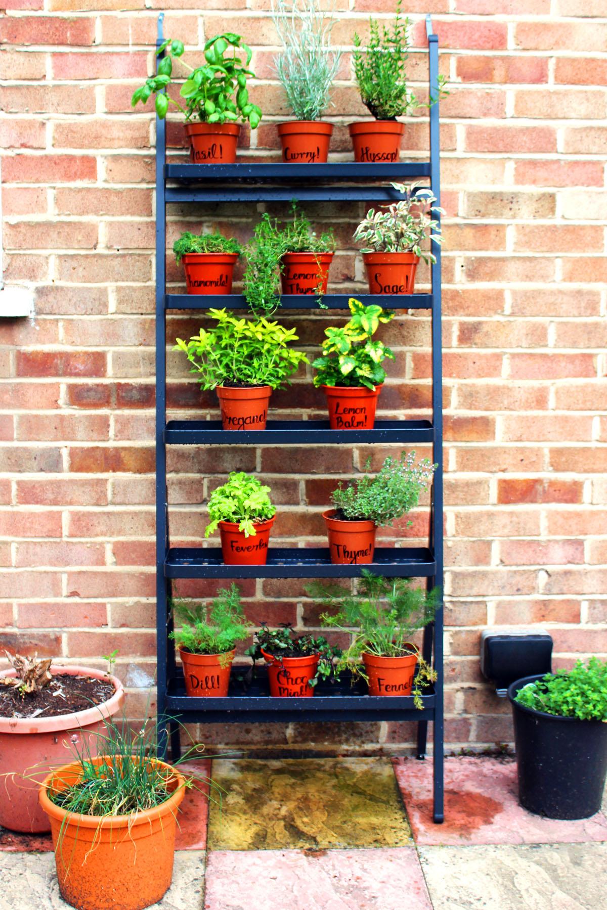 Create your own kitchen garden part 3 herbs supper for Creating a kitchen garden