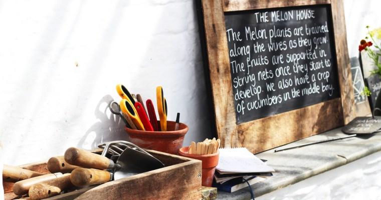 Our kitchen garden – making plans in year 1