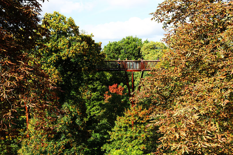 Discover 5 reasons why you should visit South London's Kew Gardens this autumn! It's the perfect way to spend Occtober half term with the kids!