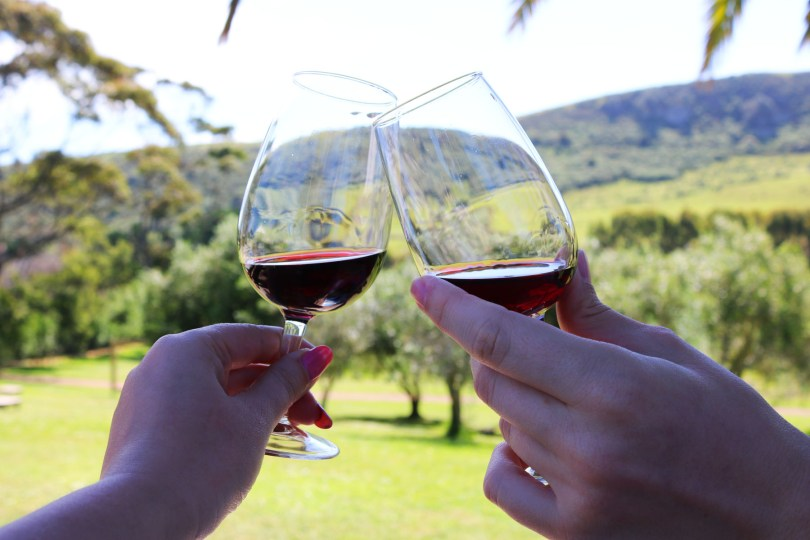Take a ferry over to Waiheke Island for a day of New Zealand wine and delicious food