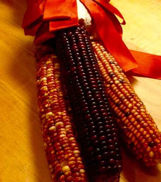 Halloween Corn
