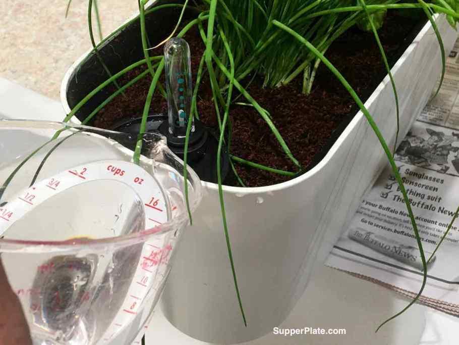 Adding water to the Aquaphoric Herb Garden