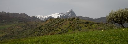 landscape-1275