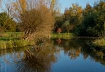 colours of autumn web-9885735