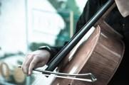ponte musica web-9889797