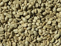 Green coffee bean weight loss review does it work
