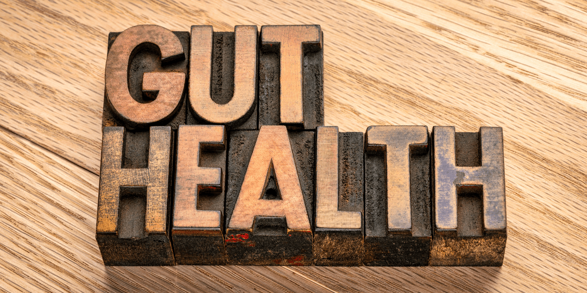 gut health supplements