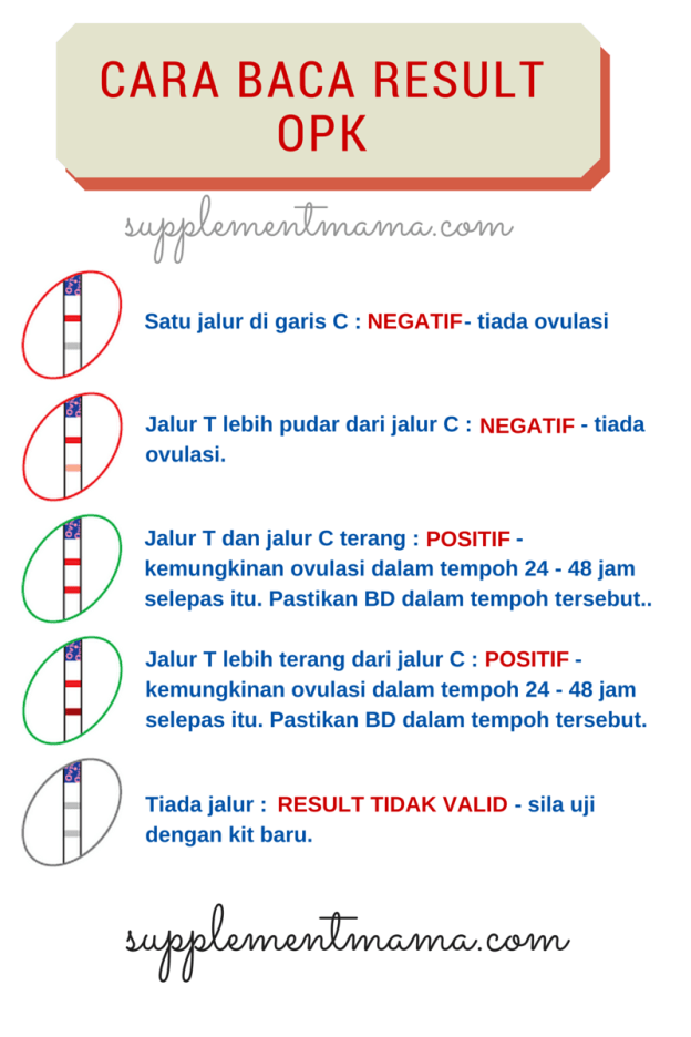 cara baca result opk
