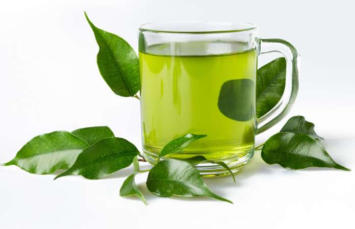 Green Tea Diet for Cancer Patients