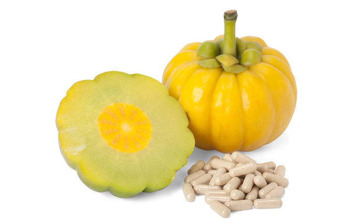 Rapid Results Garcinia Cambogia Pills