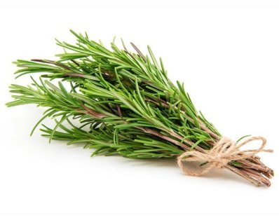Treat your Pain with Rosemary Leaves