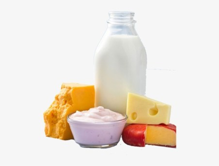Milk, Yogurt and Cheese