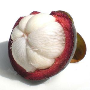 Pure-Garcinia-Cambogia-Extract