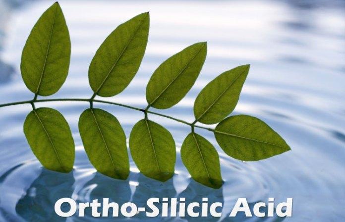 Orthosilicic-Acid