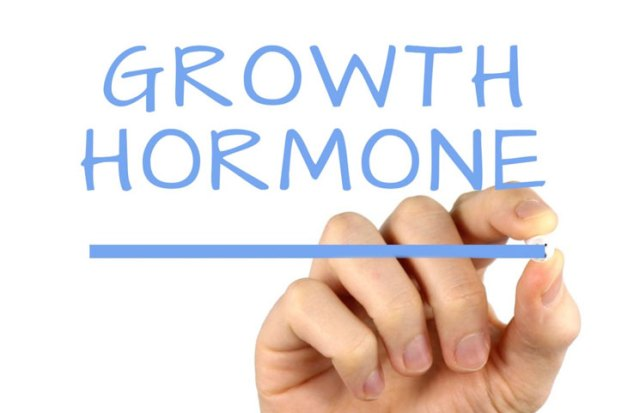 Image result for Human Growth Hormone (HGH)