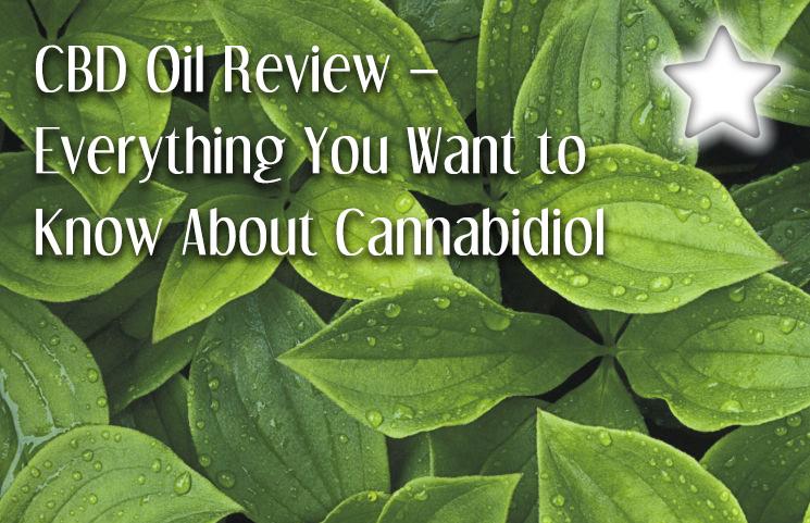 cbd oil review