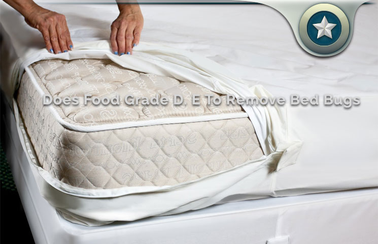 Does Food Grade Diatomaceous Earth Work To Remove Bed Bugs ...