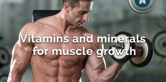 vitamins and minerals muscle growth
