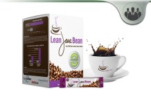 Vitae Global Lean Java Bean