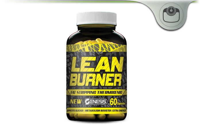 L carnitine fat burner review image 1