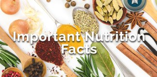 Important Nutrition Facts You Should Know