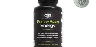 brain body energy
