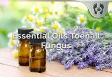 essential oils toenail fungus