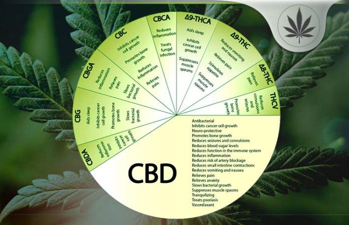 Edible CBD