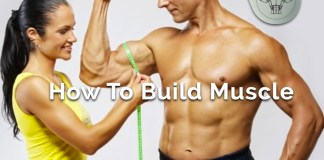 Muscle Building Guide