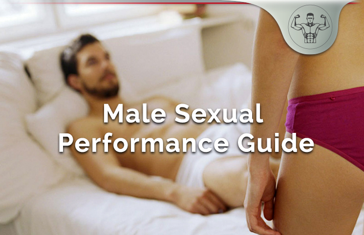 Male Sexual Performance Guide