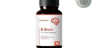 LioSearch B-Brain