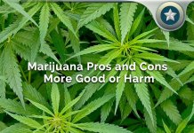 Medicinal Marijuana Pros And Cons