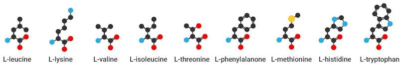 nine-amino-acid