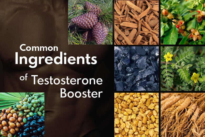 15 Most Common Ingredients in Natural Testosterone Booster Supplement