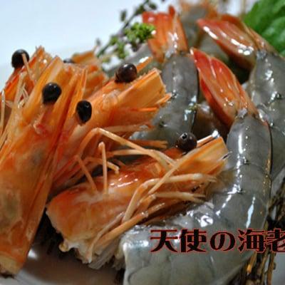 天使の海老 生食可 1kg 30尾〜40尾