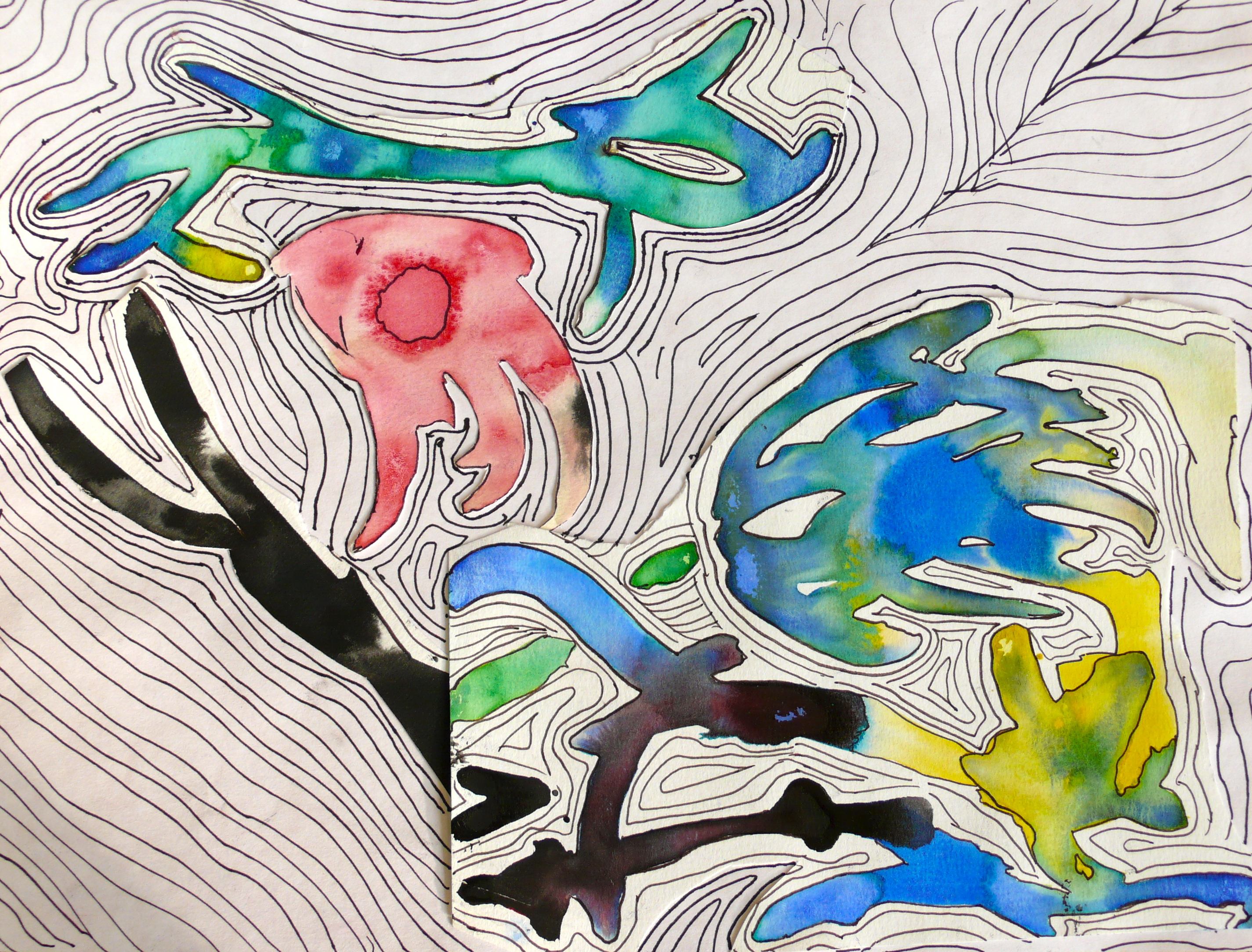 The Smartteacher Resource Watercolor And Contour Lines