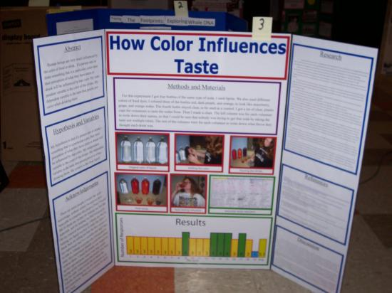 Can Dogs See Color Science Project