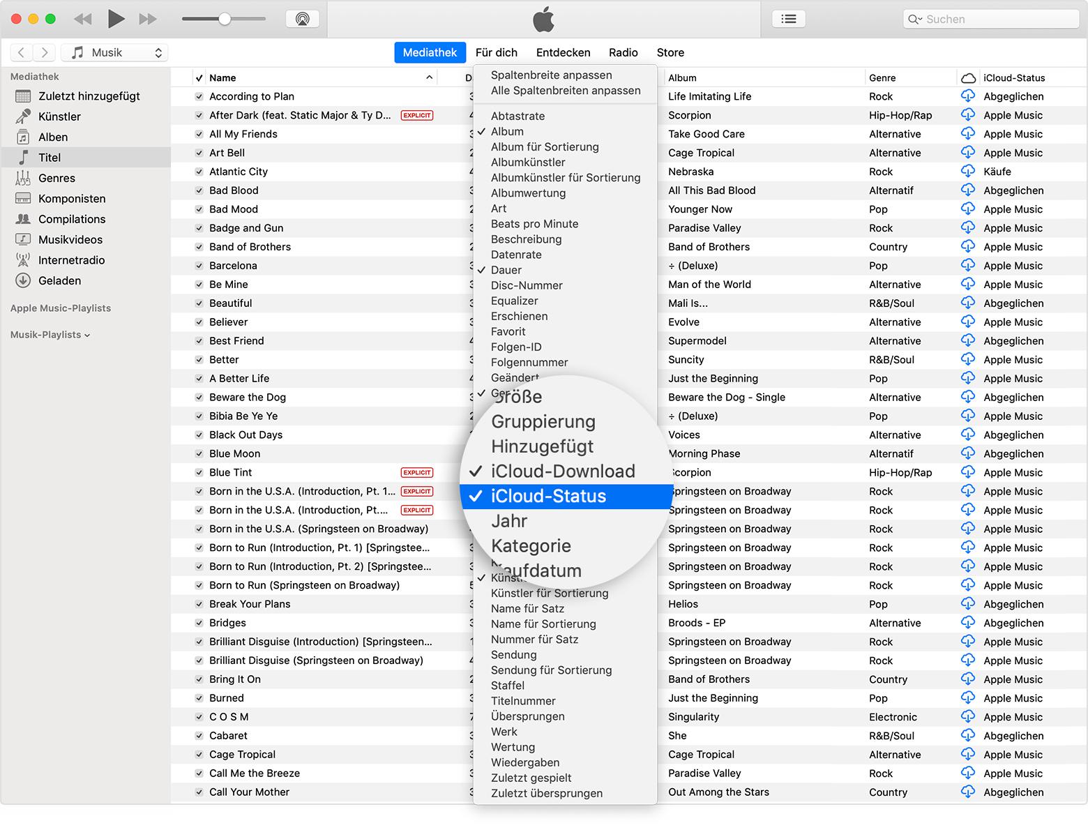 Informationen zu den Symbolen und zum Status der iCloud
