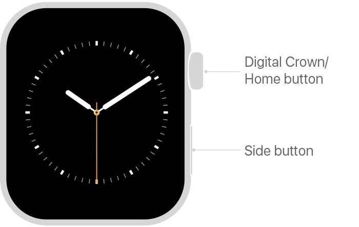 apple watch series4 front digital crown side button tech specs - طريقة التقاط صور الشاشة لساعة Apple Watch وعرضها على جوال آيفون