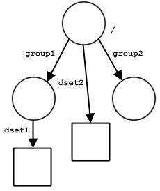 HDF5 User's Guide: Data Model