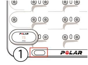 Mache dich mit Polar Team Pro vertraut