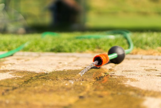 hose lying on grass and path