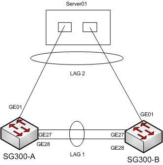 Connect server NIC teamed with Dynamic Link Agregation on